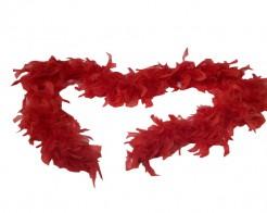 Rote Federboa