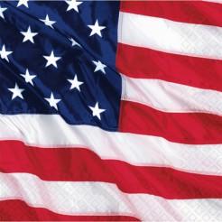 USA Servietten Set
