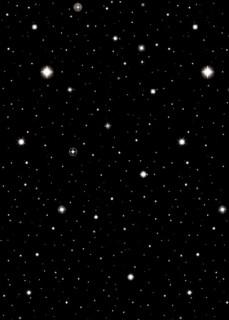 Hollywood Stars Wanddeko schwarz-weiss 12m
