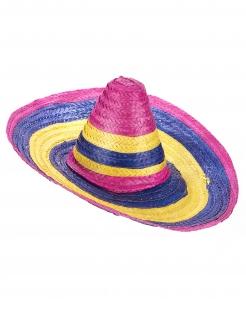 Sombrero Mexikaner bunt