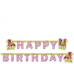 Happy Birthday Pferde Girlande Kindergeburtstag Deko hellgrün-rosa 190x15cm