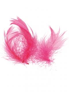 Federn Partydekoration pink