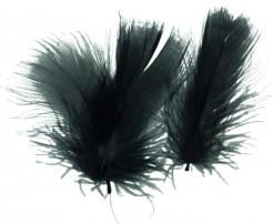 Deko Federn schwarz 7 cm