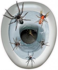 Schaurige Spinne Halloween Toiletten-Sticker bunt 30x43cm