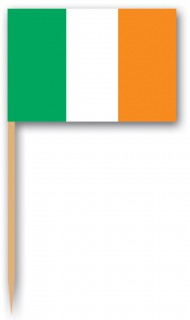Zahnstocher Fähnchen Irland 12 Stück grün-weiss-orange