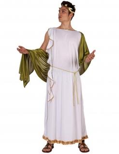 Griechen-Kostüm Antikes Herrenkostüm weiss-grün-gold