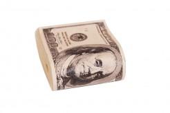 Fake Dollar-Geldbündel grün-beige