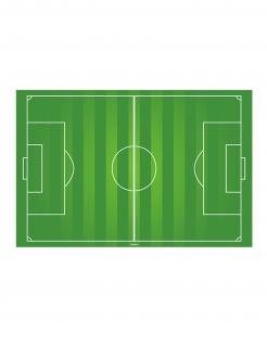Fussball-Tortenaufleger Spielfeld grün-weiss 20x30cm