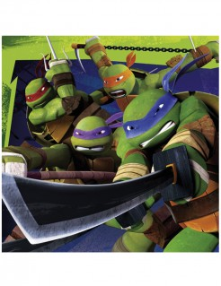 Teenage Mutant Ninja Turtles™ Partyservietten Lizenzware 20 Stück bunt 33x33cm