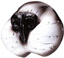 Katzennase Kostüm-Zubehör weiss-grau-schwarz