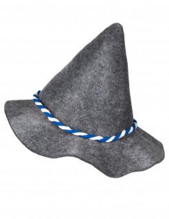 Bayern Filzhut grau-blau-weiss