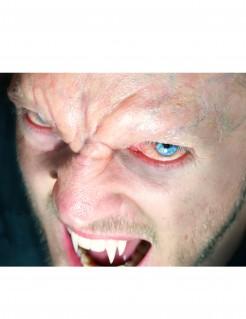 Vampir-Stirn Tattoo Halloween-Makeup hautfarben