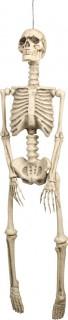 Deko-Skelett Halloweendeko zum Aufhängen beige 95x21cm
