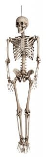 Realistisches Skelett Halloween-Hängedeko beige 160cm