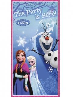 Tür-Banner Die Eiskönigin blau-weiss-rosa