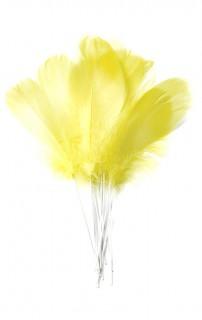 Set aus 12 Vogelfedern in Gelb