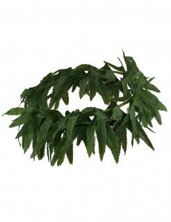 Cannabis-Blätter Haarband Hanf grün
