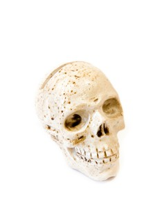 Totenschädel Halloween-Deko 4,5 x 5,5cm