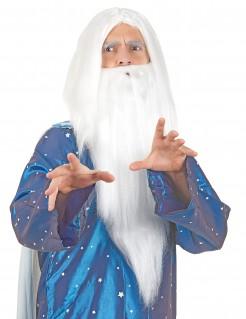 Zauberer-Perücke mit langem Bart weiss