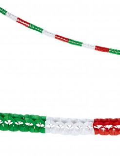 Partygirlanden Italien Fanartikel 2 Stück 3m