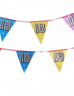 Geburtstags-Wimpelgirlande Zahl 18 bunt