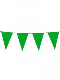 Wimpelgirlande Partydeko grün 10m