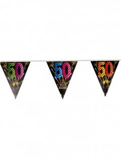 50. Geburtstag Wimpelgirlande bunt 7m