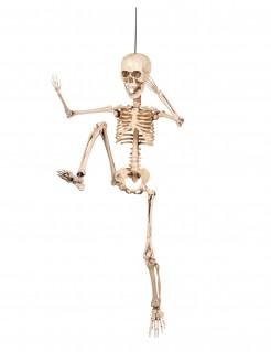 Halloween Dekoration bewegliches Skelett weiss 50 cm