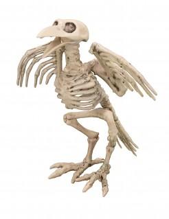 Untoter Rabe Skelettvogel Halloweendeko weiss 19,5cm