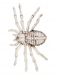 Untote Spinne Gruseltier weiss 12x24cm