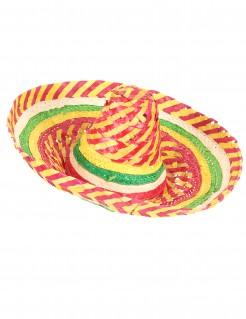 Mexikaner Sombrero Strohhut bunt