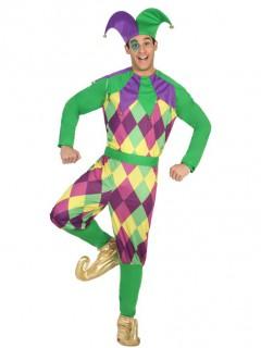 Harlekin-Kostüm Erwachsene lila-grün