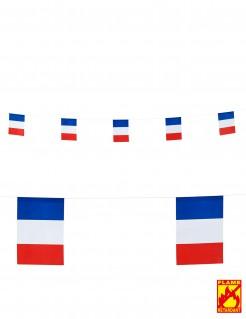 Frankreich Wimpel-Girlande Party-Deko weiss-rot-blau 6m