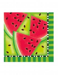 Wassermelone Servietten Party-Deko 16 Stück rot-grün 33x33cm