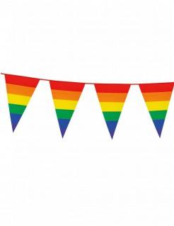 Regenbogen Wimpel-Girlande Party-Deko bunt 8m