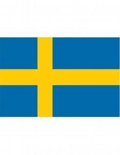 Schwedische Flagge blau-gelb 90x150cm