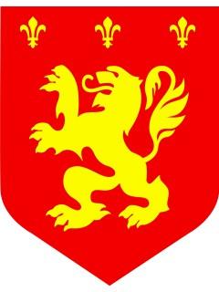 Raum Dekoration Mittelalter Wappen rot-gelb
