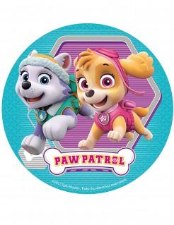 Torten Zuckerplatte Lizenzartikel Paw Patrol bunt 16 cm