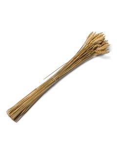 Weizen-Ähren Partydeko 25 Stück braun 60cm