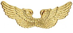 Engelsflügel Kostüm-Zubehör gold 88x25cm
