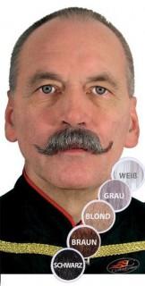 Kaiser Wilhelm-Bart Schnauzer braun