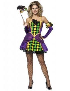 Karneval Harlekin Damenkostüm Clown lila-gelb-grün