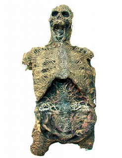 Verweste Mumie Halloween-Deko grau-braun 140cm