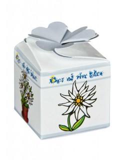 Edelweiss Pflanzen-Set Geschenkidee 4-teilig weiss 3,5x3,5cm