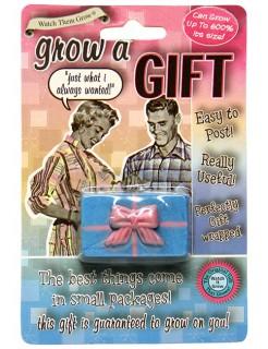 Wachsendes Geschenk Geschenkbox blau 5x3cm