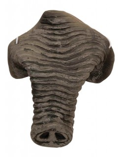 Elefanten-Rüssel grau