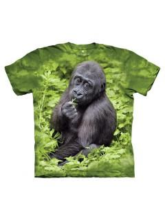 The Mountain Kojo Western Lowland Gorilla Kinder T-Shirt grau-grün