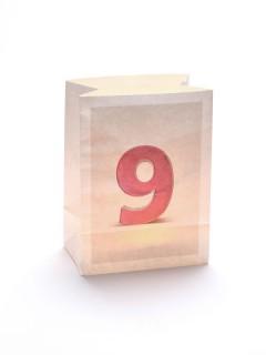 Windlicht Tüte Zahl 9 weiss 12,5x8x17cm