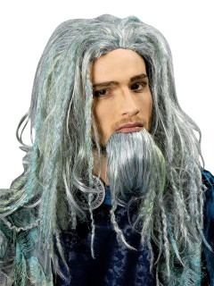 Poseidon Meeresgott Perücke mit Bart grau-grün