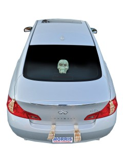 Skelett im Kofferraum mit Licht Halloween Deko-Set 5-teilig weiss 41x25x8cm